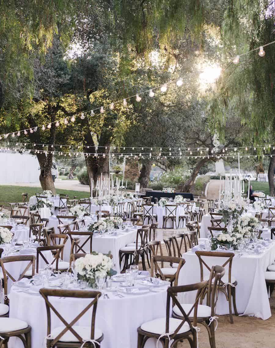 Event Planners Event Coordinators Wedding Vendors