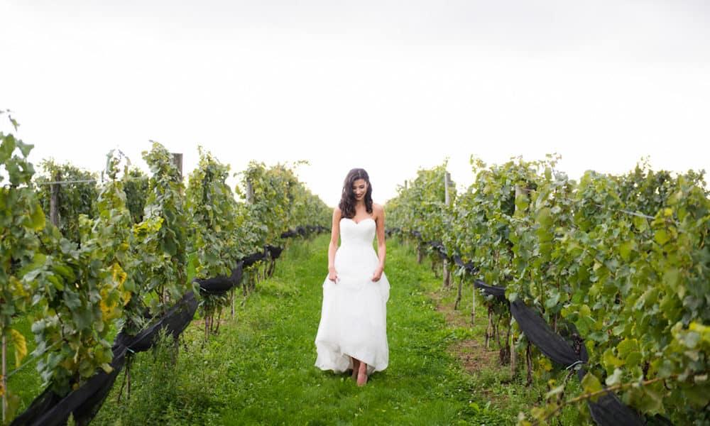 Elegant White, Gold and Greenery Vineyard Styled Shoot