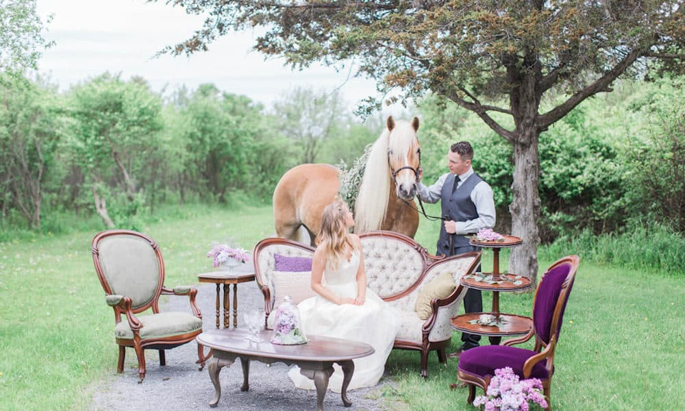 Charming Outdoor Styled Shoot Full of Lavender (and Inspired by Tangled!)