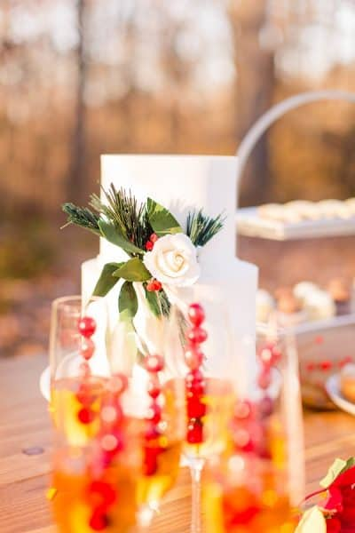 Maryland Christmas Styled Shoot