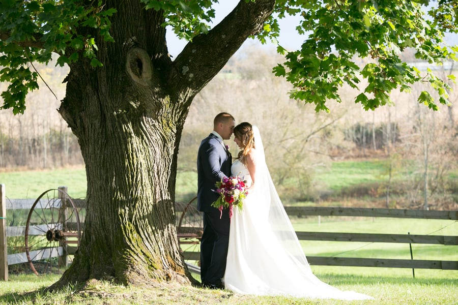 Wedding Shot With Old Oak