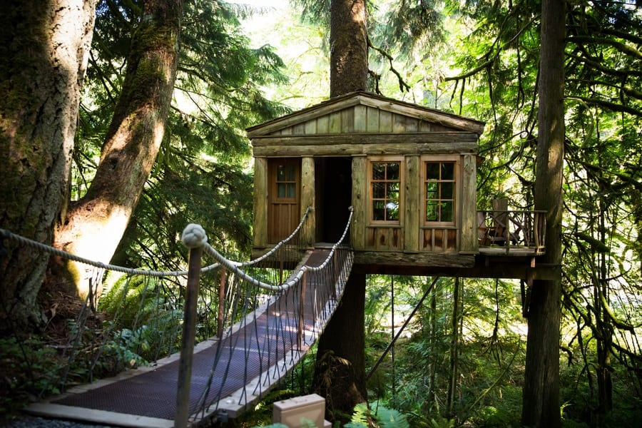 forest wedding treehouse