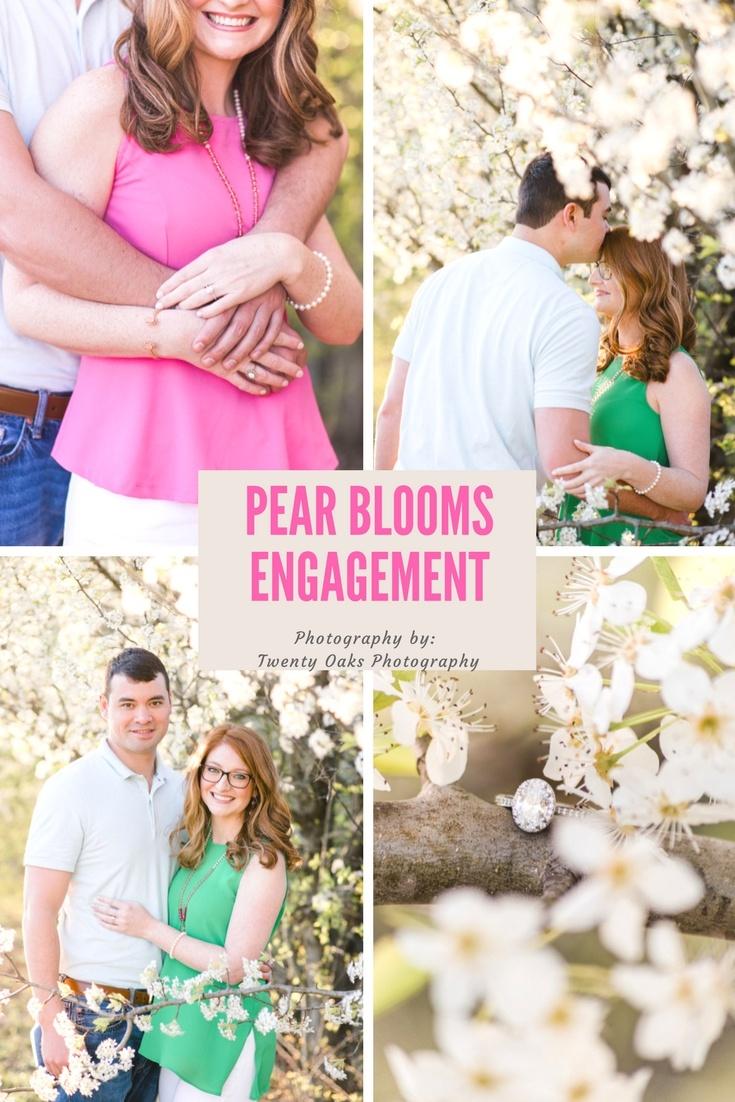 Bradford Pear Bloom Engagement Session