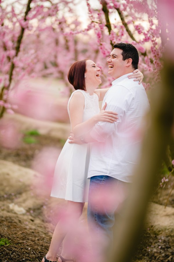 Blossom Trail Engagement Photos