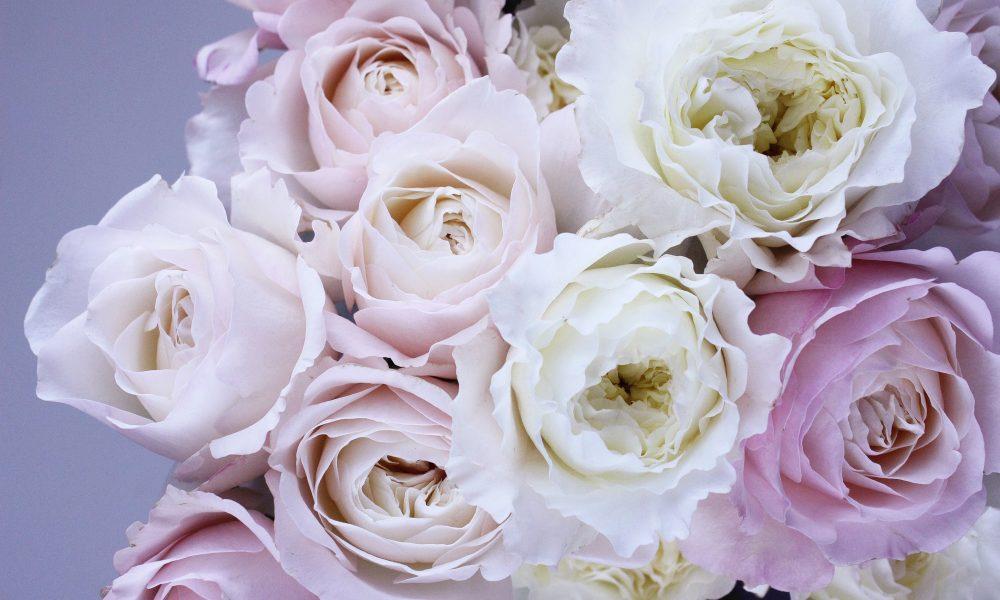 6 Most Popular Wedding Flowers Every Bride Should Consider