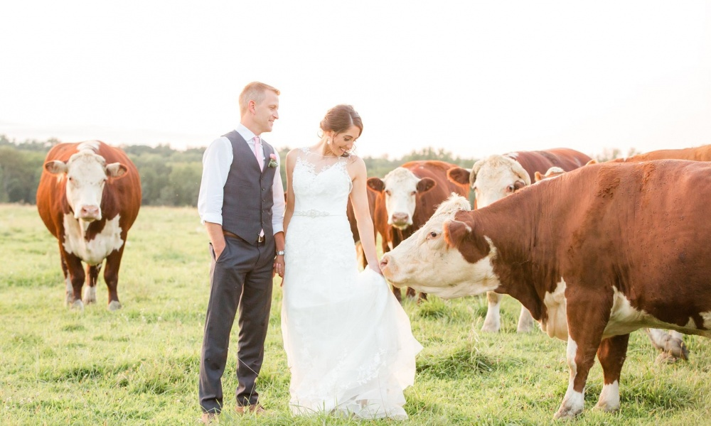 Stone Rows Farm Wedding